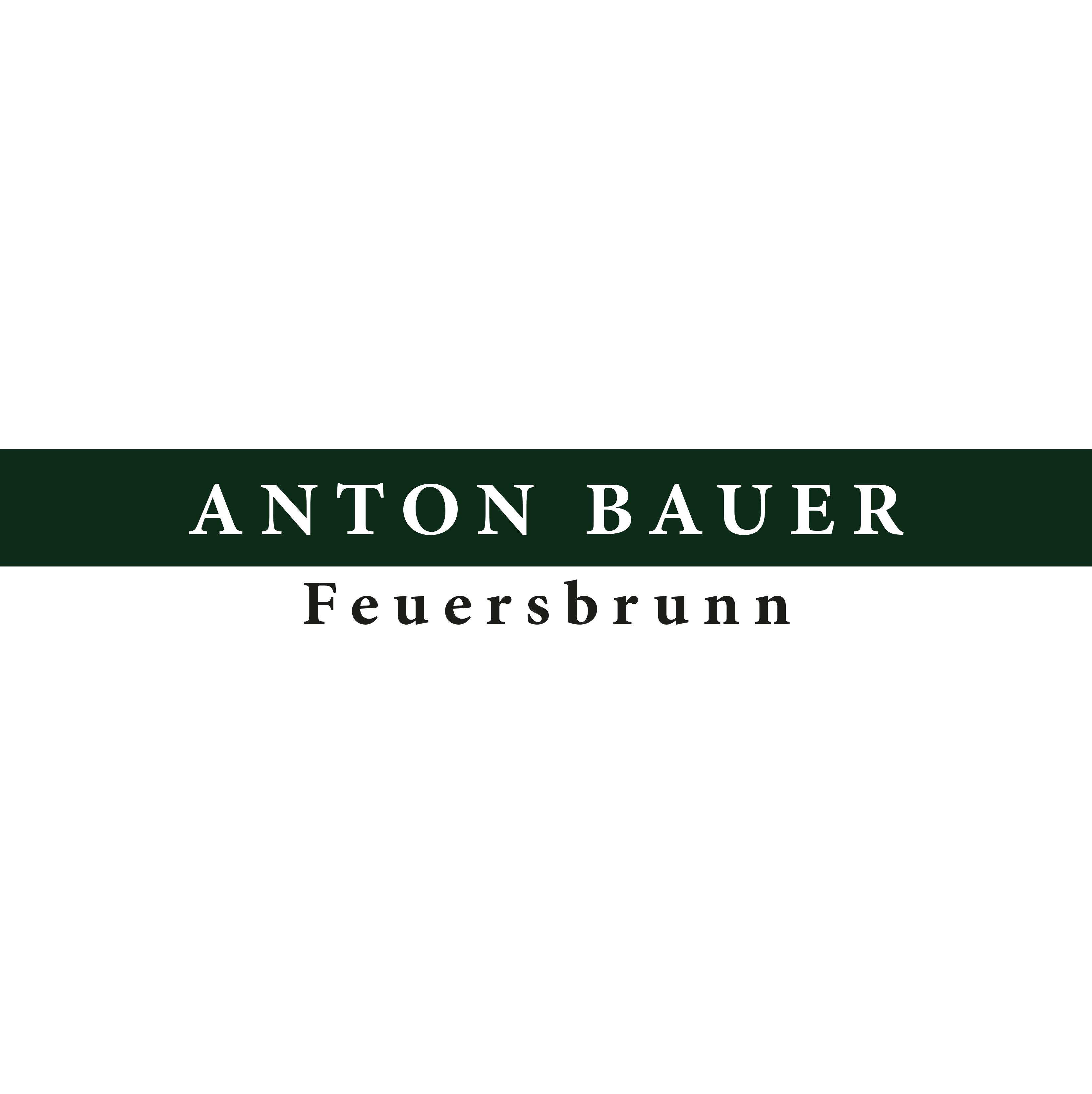 Bauer Anton-Cuvée - Ried Wagram, 2000 - 1,5 l